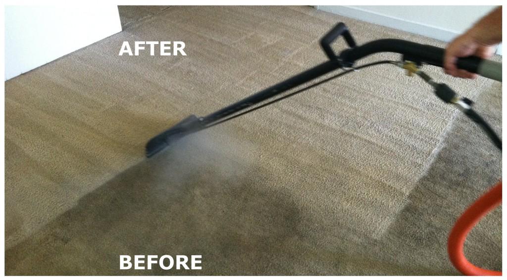 Carpet Cleaner Leederville Steam Carpet Cleaning