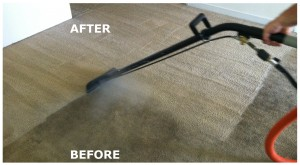 Carpet Cleaner Stirling