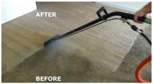 Carpet Cleaner Stirling